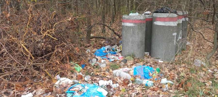 Śmieci zostały dziś posprzątane przez pracowników Urzędu Gminy w Mszanowie