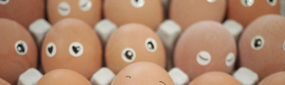 Niezłe jaja w kuchni Andrzeja Polana