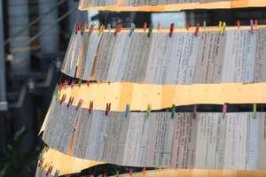 Pierwsza na świecie choinka z kart katalogowych stanęła w Olsztynie!