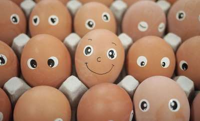Dlaczego warto jeść jajka? Oto 6 powodów