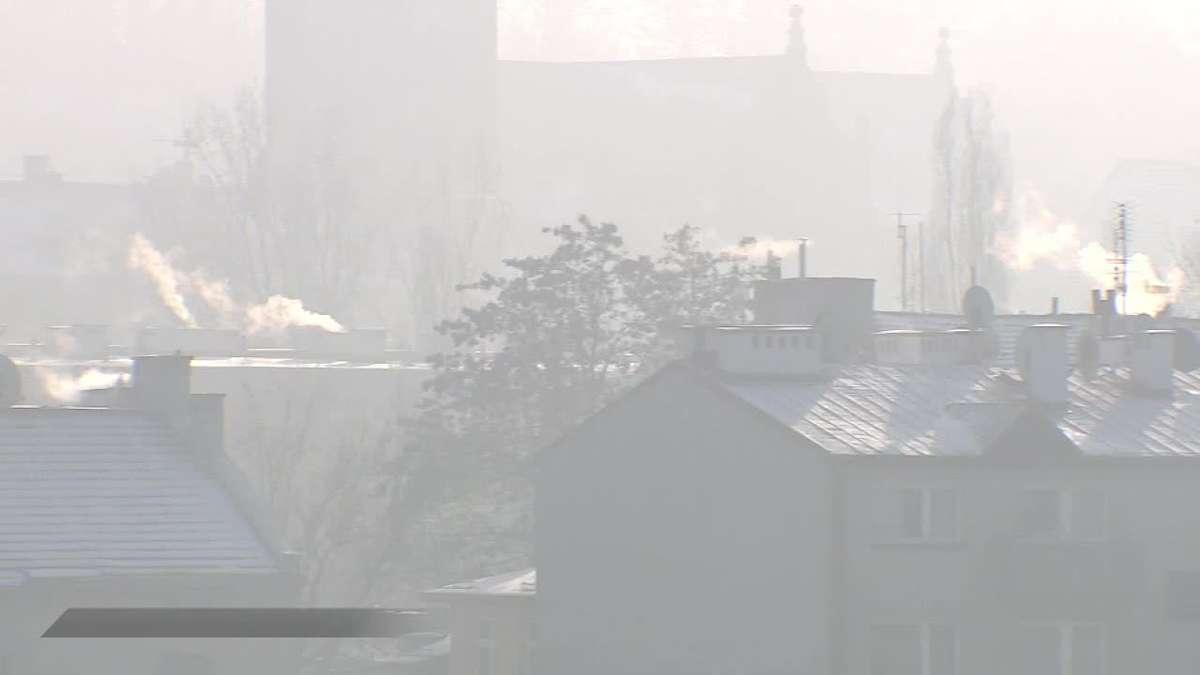 Samochody nie są głównym sprawcą smogu - full image