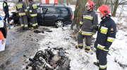 Samochód wpadł w poślizg i uderzył w drzewo. Siła uderzenia była tak duża, że z pojazdu wypadł silnik