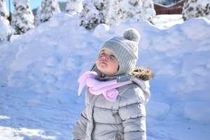 """Wybieramy """"Zimowego Brzdąca""""!"""