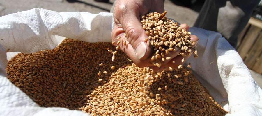 W przypadku mieszanek zbożowych i pastewnych dopłatą mogą być objęte tylko te mieszanki, w skład których wchodzą jedynie nasiona posiadające kategorię elitarny lub kwalifikowany