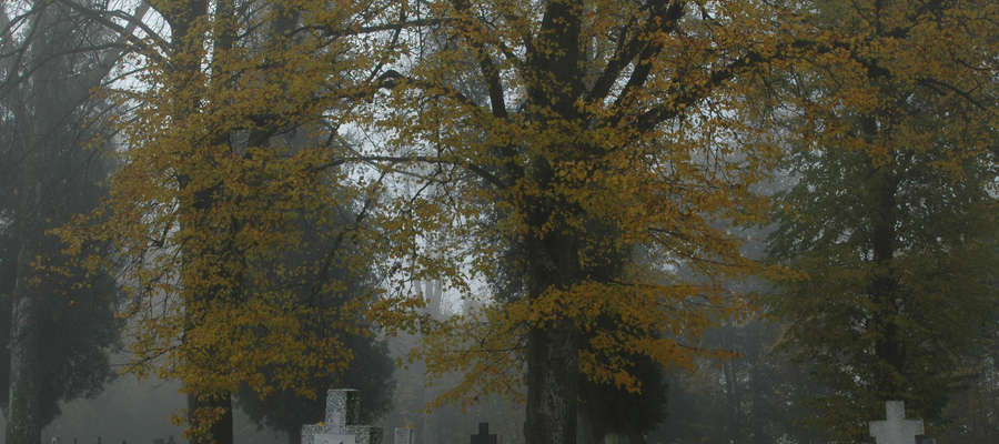 Cmentarz w Żegotach