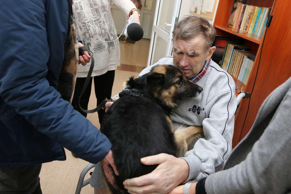 Śmiertelnie chory nie zdążył znaleźć opiekuna dla ukochanego psa. Rex wciąż szuka domu - full image