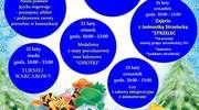 Program ferii w GOK-u w Krasnosielcu