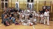 Bezpłatna Akademia Karate Kyokushin za nami