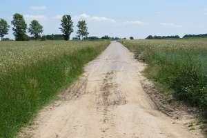 KOWR zastąpi dwie rolnicze agencje