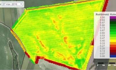 Jak dane satelitarne mogą pomóc uprawom?