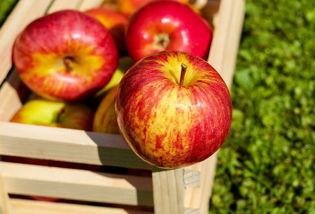 Jedno jabłko dziennie czyni cuda - full image