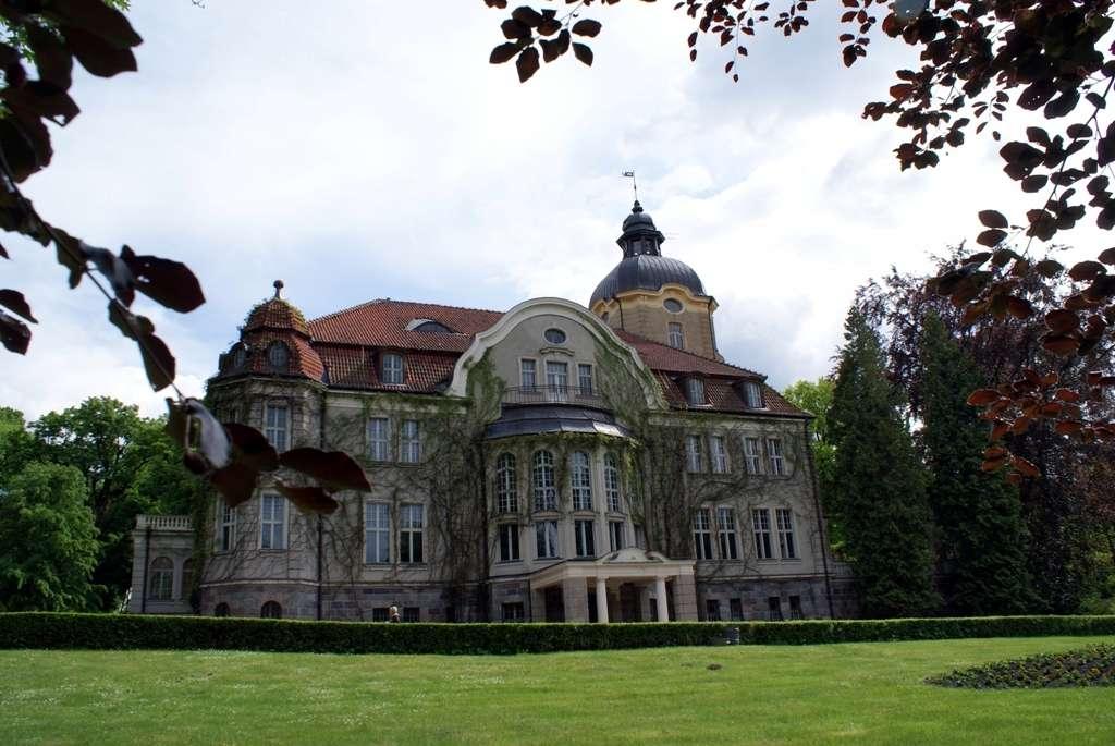 Pałac w Łężanach ponownie planem filmowym - full image