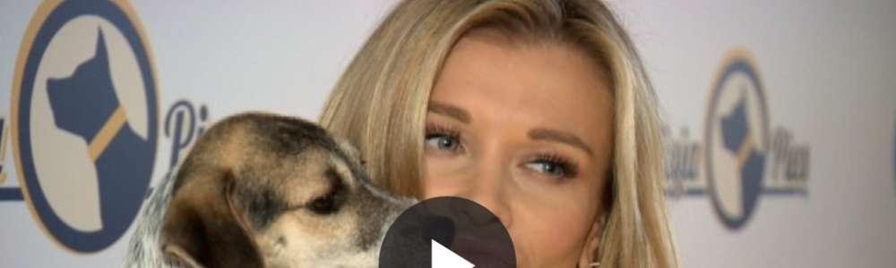 Misja Pies: Joanna Krupa promuje swój projekt