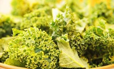 Jarmuż – warzywny bukiet witamin