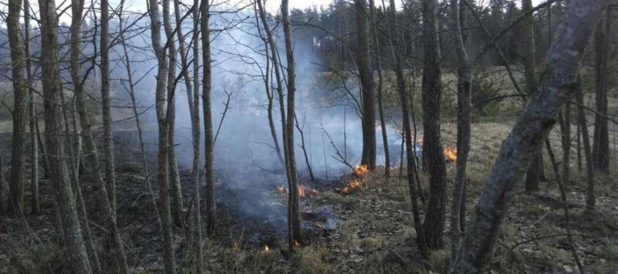 Druhowie z OSP Spytkowo gasili pożar traw w Pieczonkach
