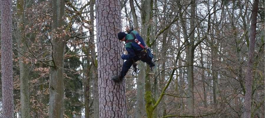 Szyszkarz - alpinista w akcji