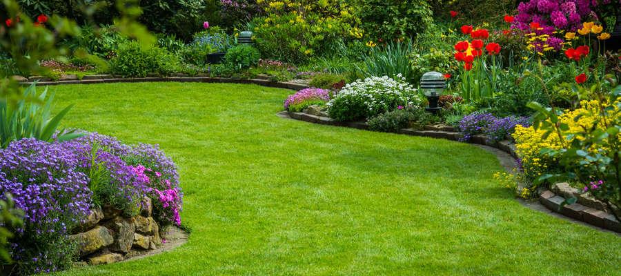 Koniec marca jest ostatnim momentem na wykonanie wiosennych prac w ogrodzie