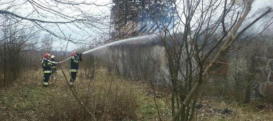 Strażacy zbudowali kilometrową linię gaśniczą żeby ugasić pożar