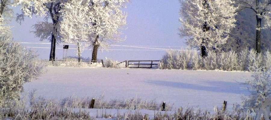 """""""Ostatnie tchnienie zimy"""". Okolice Lipicy, gm. Sępopol."""