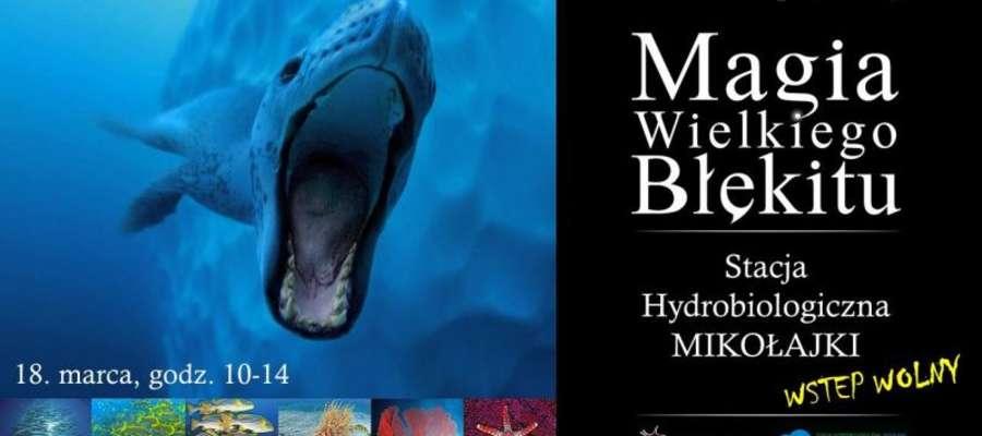 Magia Wielkiego Błękitu - plakat