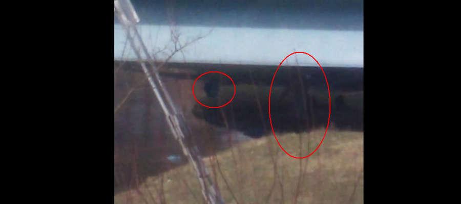 Kadr z filmu z zaznaczeniem worka ze śmieciami i postaci, która je wyrzuca.