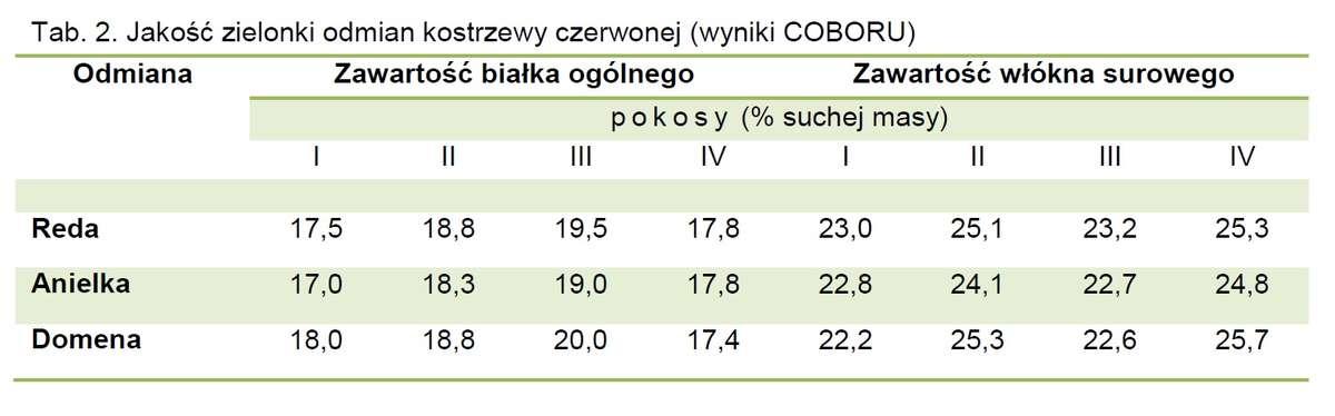 Jakość zielonki odmian kostrzewy czerwonej