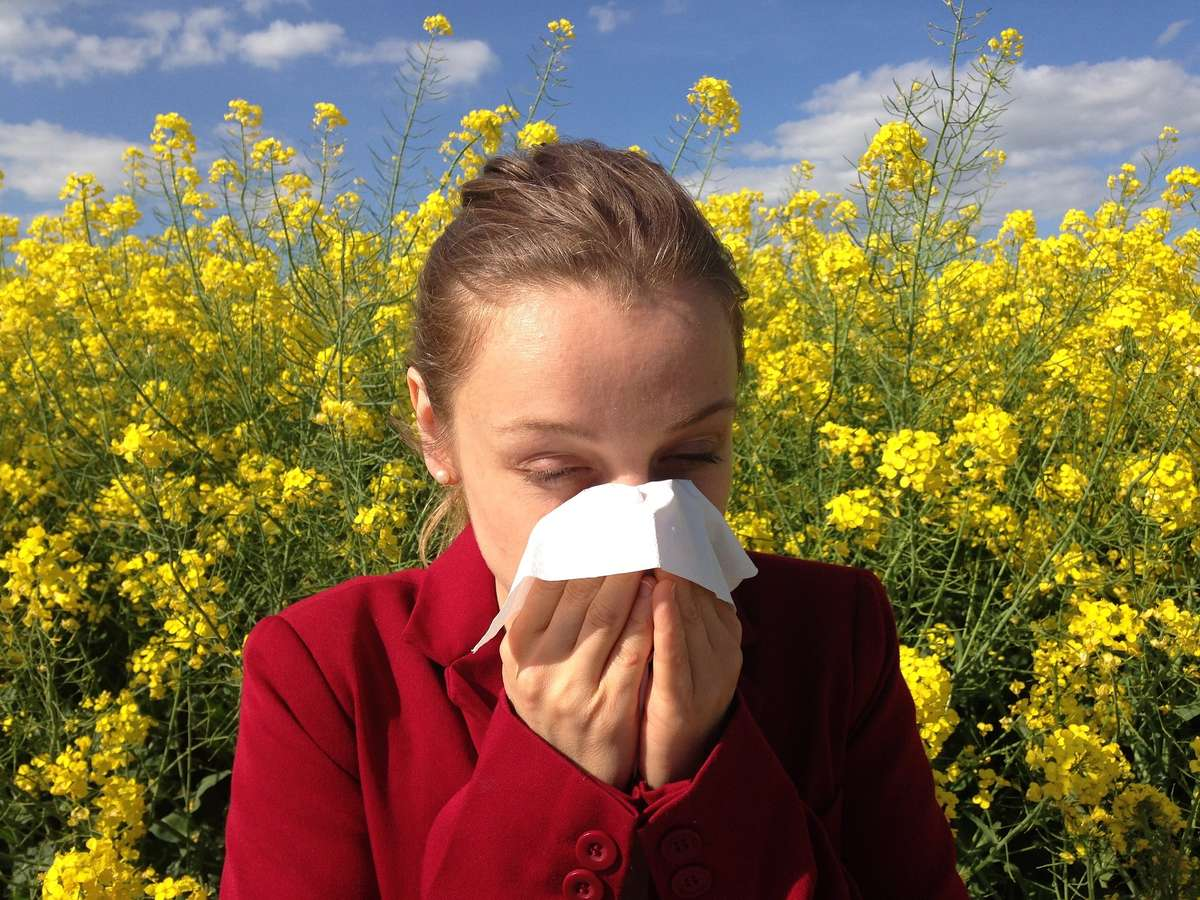 Błędne rozpoznanie wroga, czyli o alergii - full image