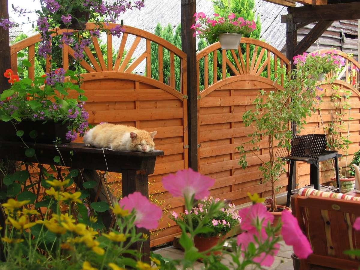 Wyjdź z domu do ogrodu - full image