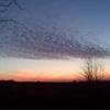 Zdjęcie Tygodnia. Zachód słońca nad Wozławkami