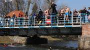 Skoki z mostów to wielkanocna tradycja