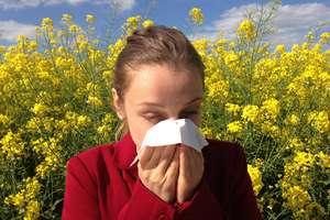 5 roślin, których muszą unikać alergicy w kwietniu i maju