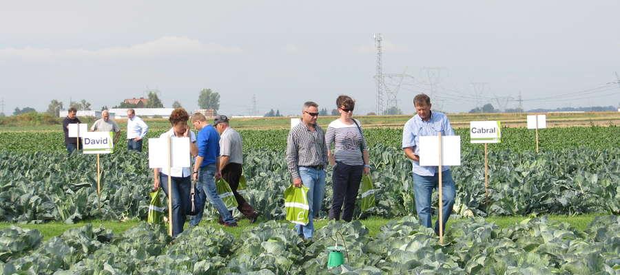 Spółdzielnia rolników będzie dobrowolnym zrzeszeniem, spółdzielnie będzie mogło założyć co najmniej 10 osób