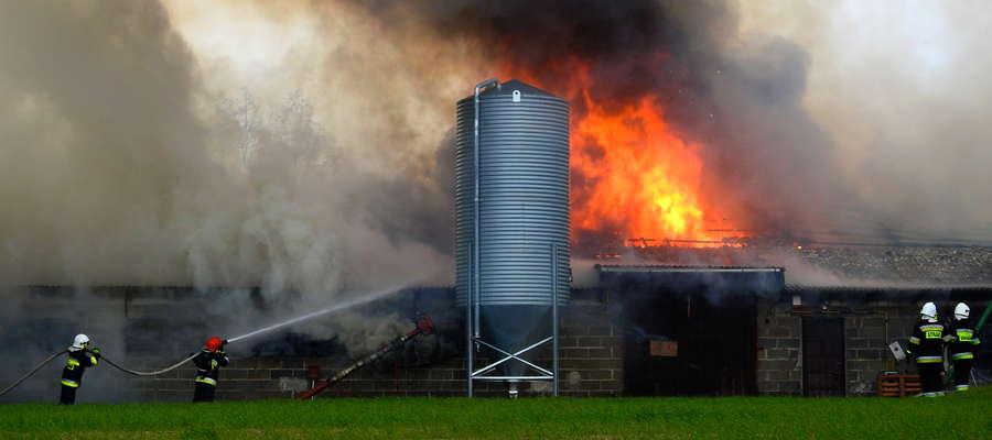 Duży kurnik spłonął doszczętnie w Nowym Mieście