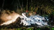 Pożar składowiska opon w Dąbrowie [zdjęcia]