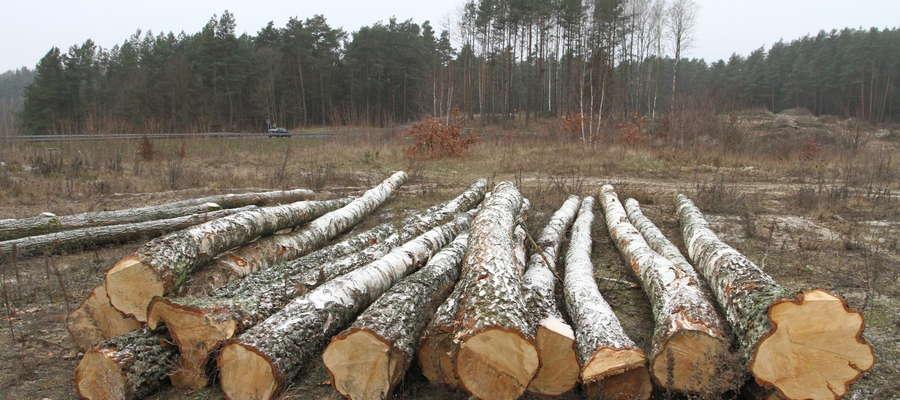 Jeśli właściciel działki będzie chciał rozpocząć budowę związaną z działalnością gospodarczą na działce, na której wyciął drzewa, będzie musiał wnieść opłatę za ich wycięcie