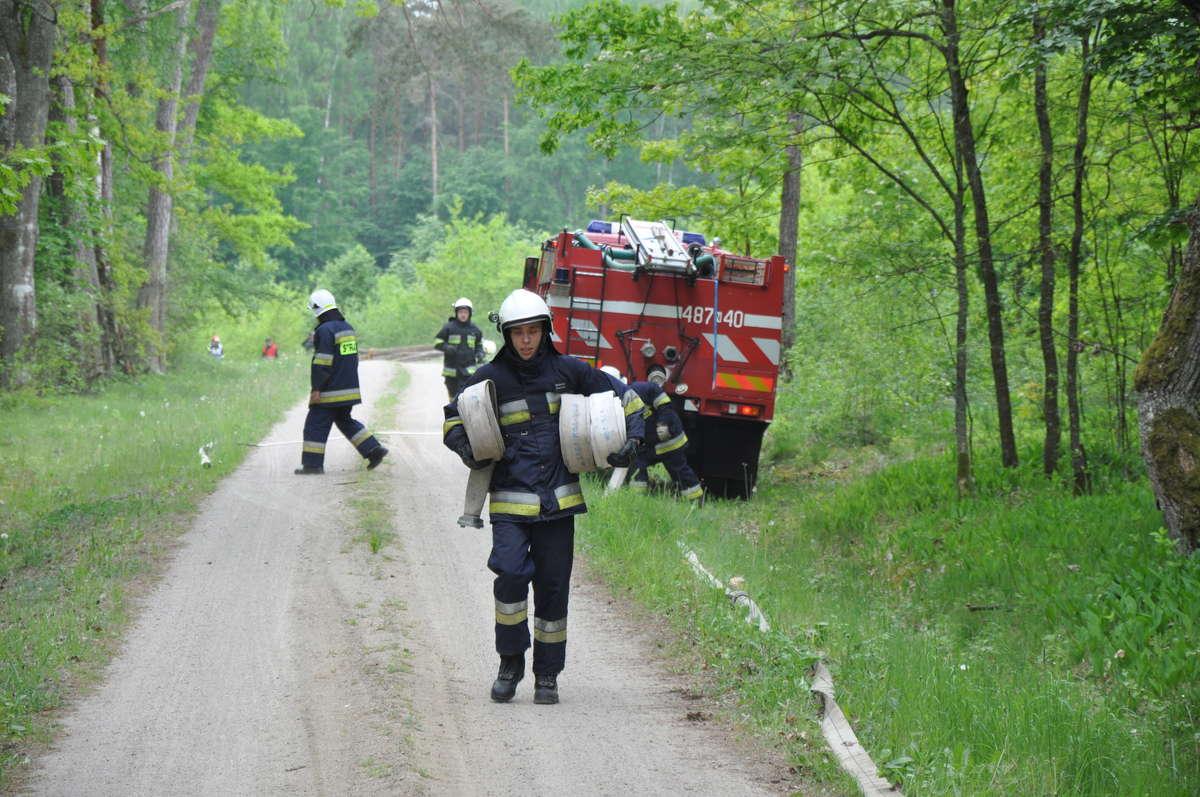 Ćwiczenia strażaków w lesie