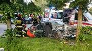 Wypadek na Malborskiej. Była pijana, wyprzedzała i uderzyła w dwa drzewa, dwie osoby ciężko ranne [zdjęcia]