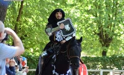 Pokazy walk konnych ozdobą turnieju rycerskiego [ZDJĘCIA]