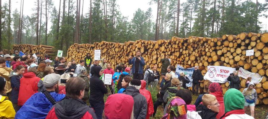 Kilkaset protestujących z całej Polski przeciwko wycince Puszczy Białowieskiej