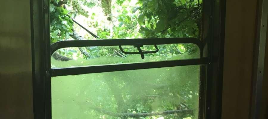Pasażerowie siedzą wewnątrz wagonu uwięzionego pod gałęziami i nie mogą go opuścić