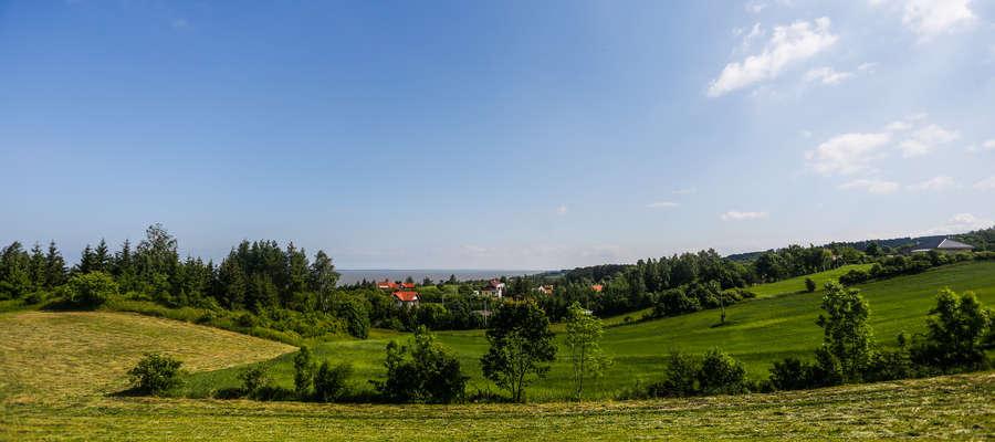 Suchacz położony jest nad Zalewem Wiślanym, około 15 km od Elbląga, na obszarze Parku Krajobrazowego Wysoczyzny Elbląskiej. Miejscowość znajduje się na trasie Kolei Nadzalewowej (obecnie nieczynnej).