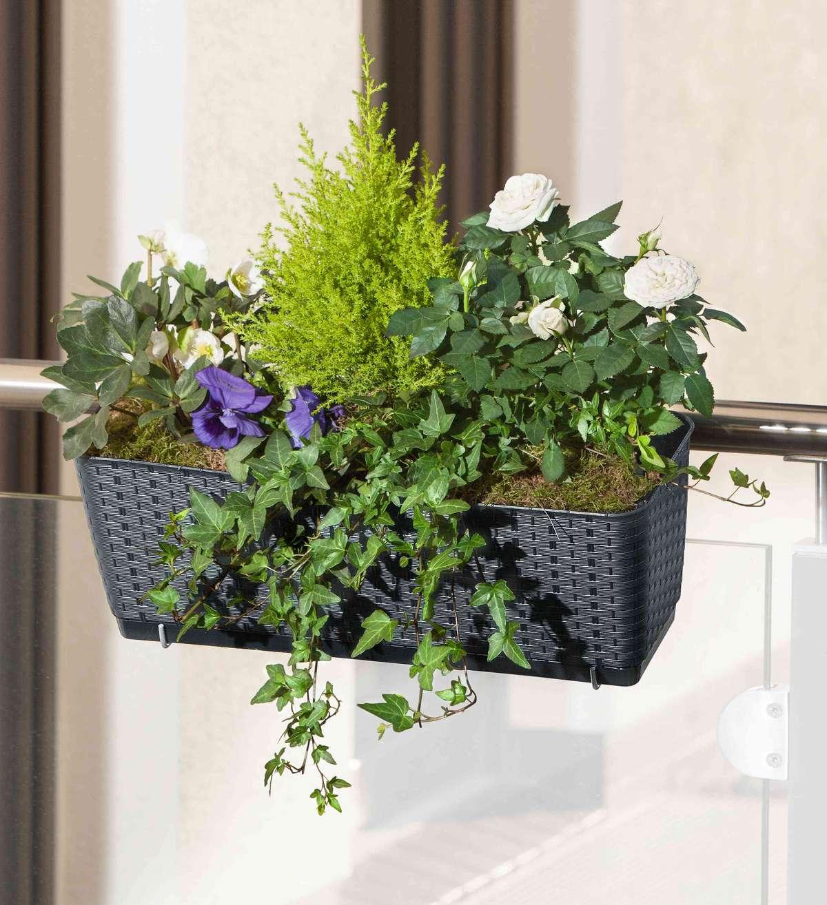 Jak zorganizować romantyczny ogród na balkonie lub tarasie - full image