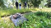 Zarośnięty cmentarz w Olsztynie został w końcu uporządkowany. Potrzebna była interwencja