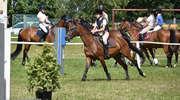 Regionalne Zawody Jeździeckie w skokach przez przeszkody Żegoty 2017