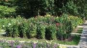 Najpiękniejsze ogrody Warmii i Mazur