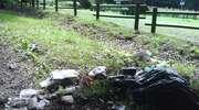 Czytelniczka alarmuje: zostawili śmieci przy wiatach