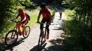 Wycieczka rowerowa do lasku miejskiego