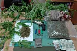 W domu miał narkotyki i broń, a obok małą plantację marihuany