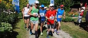 Gąsiorowo33, czyli bieg na 3, 13 i 33 km. Zapisz się!