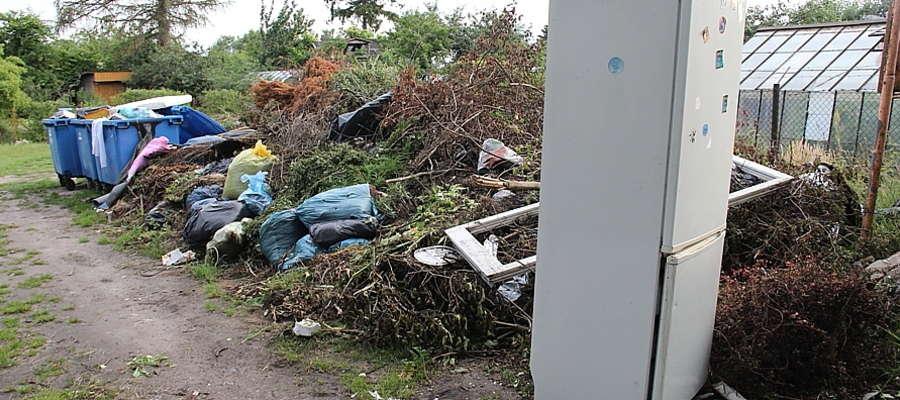 Śmietnisko na terenie ogrodów rodzinnych im. W. Kętrzyńskiego w Giżycku